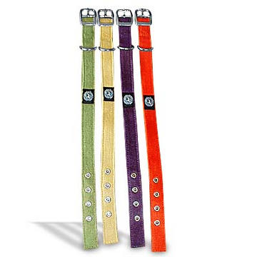 Hemp Dog Collar from Planet Dog